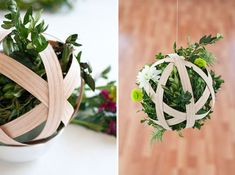 A plant in strips of wood that hangs and looks beautiful-- I'll try it!