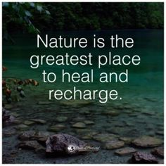 Benefits of forest, forest bathing, power of positivity, ancient beauty, in Hiking Quotes, Travel Quotes, Forest Quotes, Citation Nature, Mountain Quotes, Forest Bathing, Power Of Positivity, Adventure Quotes, Walking In Nature