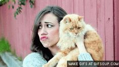 COLLEEN BALLINGER GIFS gifs gallery images at GifSmile.com