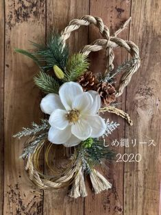 Diy Wreath, Grapevine Wreath, Grape Vines, Christmas Wreaths, Projects To Try, Creations, Seasons, Green, Crafts