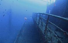 Haven http://www.scubaface.it/it/Sito-immersione/relitto-haven-%E2%80%93-arenzano