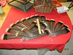 20 Beautiful Natural Merriam's Wild Turkey Feathers from The Black Hills of South Dakota Ornaments Decorating Floral Arrangements Turkeys by dakotagypsy on Etsy