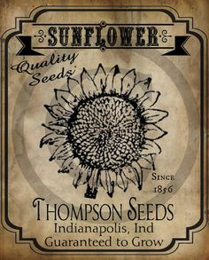 Primitive Sunflower Seed Packet Print Jpeg Digital Image Feedsack Logo for Pillows Labels Hang tags Magnets Ornies - Modern Vintage Labels, Vintage Signs, Vintage Posters, Vintage Images, Primitive Labels, Primitive Crafts, Primitive Signs, Primitive Country, Vintage Seed Packets