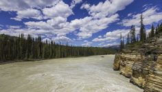Near the Athabasca Falls, Jasper NP, Canada. June 2015