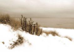 Winter snow beach scene photograph sepia by MaritebeePhotography, $15.00