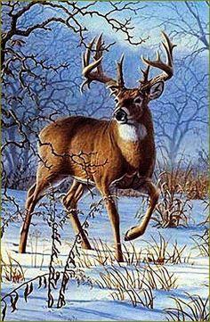 cerfs, biches, faons, chevreuils en peinture et illustrations - Larry Zach Wildlife Paintings, Wildlife Art, Animal Paintings, Animal Drawings, Deer Paintings, Deer Pictures, Animal Pictures, Animals And Pets, Cute Animals