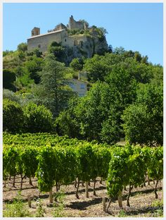 Our experience bicycling through the Cote du Rhone villages in Provence France and instruction about how to have your own Velo en Provence adventure!