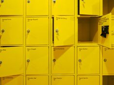 A sea of yellow (lockers)