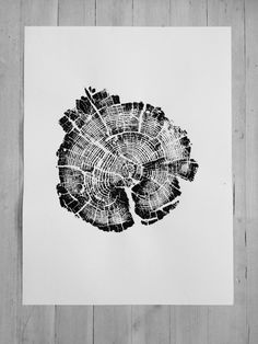 Yellowstone National Park Tree Ring Print. From Fire of 1988 by LintonArt on Etsy https://www.etsy.com/listing/251747801/yellowstone-national-park-tree-ring