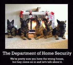 Love this... and what beautiful German shepherds.