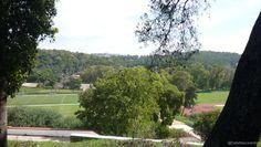 Imediações do Parque Urbano do Centro Desportivo Nacional do Jamor. Vistas obtidas da mata do jamor, sobre os campos de grandes jogos.