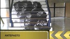 antePASTO (Ton MarMel)