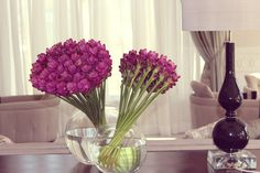 Beautiful flowers of Four Seasons Hotel Baku