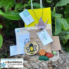 Donation made to Bumblebee Conservation Trust Create Website, Party Bags, Conservation, Charity, Place Card Holders, Christmas Ornaments, Holiday Decor, Seo, Eco Friendly