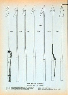 Examples of harpoons they would use in Moby Dick.