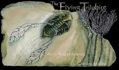 The Flying Trilobite - Art in Awe of Science by Glendon Mellow    Oil painting on shale, penciled crinoids and some digital painting and tweaks.