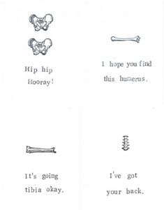 4 Anatomy Greeting Cards Gift Pack Funny Skeleton by ModDessert