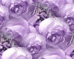 Types of Purple Flowers | Purple Wallpapers and Purple Backgrounds 10 of 114