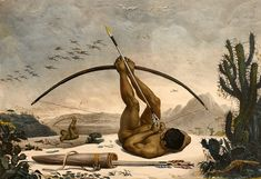 (after) Debret, Jean Baptiste:Cabocle Indian hunting birds with a bow and arrow Archery, Indigenous Tribes, Jean Baptiste, First Humans, Arte Popular, Oil Painting Reproductions, New York Public Library, Illustrations, Famous Artists