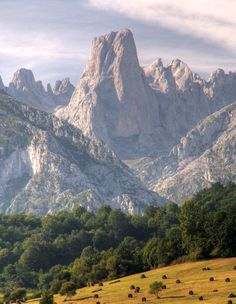 Pico Urriello   (Naranjo de Bulnes)  Astúrias  Spain