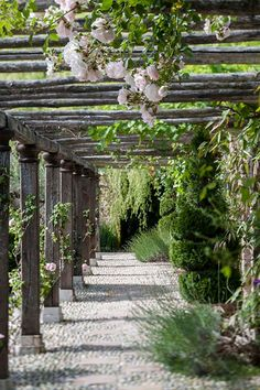 Rustic trellises with a soft climbing rose is stunning. Bring a Touch of 18th Century France to Your Bedroom
