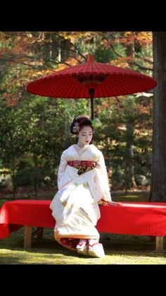 Geiko/ Facebook.com Geisha Japan, Geisha Art, Japanese Geisha, Japanese Beauty, Japanese Kimono, Asian Beauty, Traditional Fashion, Traditional Outfits, Japon Tokyo