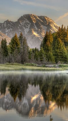 Download Wallpaper 720x1280 Wood, Fog, Morning, Mountains, Reflection, Colors Samsung Galaxy S3 HD Background