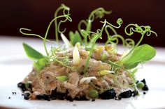 Black pepper kelp noodles, Chanterelle mushrooms, haricots jaune, olive crumb and pea vines at M. (raw food) in Santa Monica Raw Food Recipes, Gourmet Recipes, Gourmet Food Plating, Kelp Noodles, Stuffed Mushrooms, Stuffed Peppers, Eating Raw, Food Lists, Dairy Free