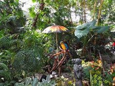 Queen Elizabeth Park - The Bloedel Conservatory