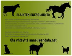 Annelielinhoito  Energiahoitoa eläimille