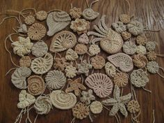 crochet seashells from Marianne. Would love to see these on a sweater or blouse with lace.