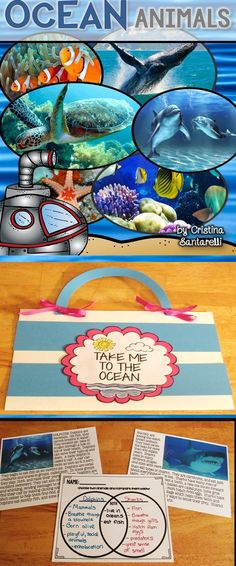Let's dive into the ocean! Your students will have fun learning about the different Ocean Animals without ever leaving the classroom! The following animals are included in this Ocean Animal Unit: Corals Crabs Dolphins Eels Fish Jellyfish Octopuses Sea Turtles Seahorses Sharks Starfish Stingrays Whales