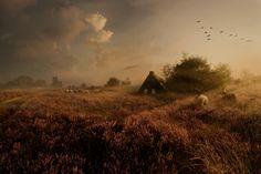 'Oude tijden herleven' - Drents Landschap. Maartje Roos - http://www.roosphotography.nl/