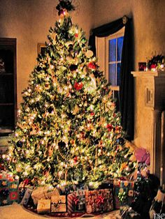 Our Christmas tree last year. :)  TSElliott  Oh it reminds me of the many I have put up and decorated--beautiful!!!qb
