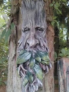 Wilhelm tree spirit on our tree in our garden