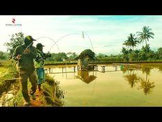SAYA DISURUH BERBURU HAMA SAMA ORANG INI | ULTRALIGHT TETON ROD - YouTube Fishing Videos, Orange, Youtube, Hama, Youtubers, Youtube Movies