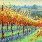 Image from http://www.derrolyn.com/Paintings_Sonoma_Scenery_files/Media/autumn%20hill/thumb.jpg.
