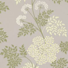 COWPARSLEY - Sanderson - Traditional to contemporary, high quality designer fabrics and wallpapers | Products | British/UK Fabric and Wallpapers | Cowparsley (DOPWCO103) | Options 10 Wallpapers