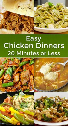 Easy Chicken Dinners in 20 Minutes or Less - 16 Great Recipes