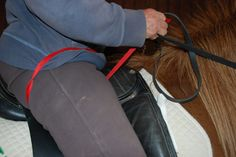 """Do you pull back on your reins or do you let your arms go too far forward? Have you heard the term """"ride back to front"""" but find yourself riding """"front to back""""? Do you have difficulty feeling that your seat is connected to your hands? This lesson will help you find the connection between…"""