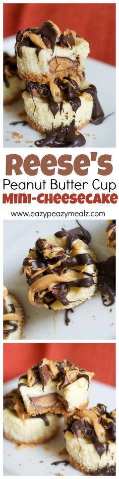 Mini cheesecakes that are easy to make, and offer all the yummy chocolate and peanut butter cup goodness you would expect from Reese's Peanut Butter Cups! - Eazy Peazy Mealz (Mini No Bake Cheesecake) Peanut Butter Cups, Peanut Butter Recipes, Köstliche Desserts, Delicious Desserts, Dessert Recipes, Yummy Food, Yummy Treats, Sweet Treats, Bon Dessert