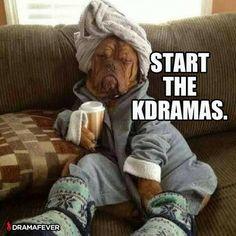 That dog...lol kdrama