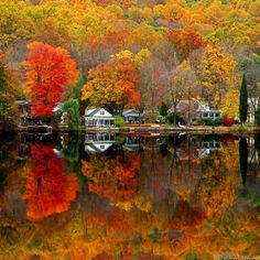New Jersey.....they say best time to visit is in the fall when you can see all these colors...on my bucket list !