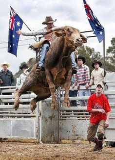 Oh yeah! They say if you wanna ride bulls, fill your mouth with marbles. Then, every time you think about riding a bull spit one out, and after you've lost all your marbles, you can be a bull rider!