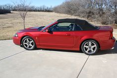 2003 Ford Mustang SVT Cobra Convertible -   2003 Ford Mustang SVT Cobra  Edmunds.com  2004 ford mustang svt cobra svt  sale  benzamotors 2003 ford mustang svt cobra convertible for sale 1872 33900. Used ford mustang svt cobra  sale  cargurus ford mustang svt cobra r  best mustang in its class! this car is a great overall racer if you want a nice looking good performing solid car and you dont. 2004 ford mustang svt cobra  sale  cargurus Save $6941 on a 2004 ford mustang svt cobra. search…