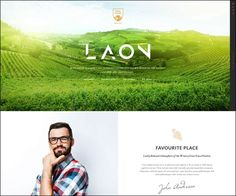 Laon Wine House Winery & Wine #Shop #WordPress Theme : https://webdesignshare.com/2016/laon-wine-house-winery-wine-shop-wordpress-theme/