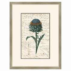 "This lovely giclee print showcases a thistle on a script-adorned background with a pewter hatch-hued frame.  Product: Framed giclee printConstruction Material: Glass and paperColor: Pewter frameFeatures: Made in the USADimensions: 32.75"" H x 25.25"" W"