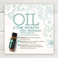 PURE™ Essential Oil of the Month: Blue Heat - Melaleuca Journal Melaleuca Essential Oil, 100 Essential Oils, Essential Oil Blends, Melaleuca The Wellness Company, Pure Oils, Romantic Roses, Carrier Oils, How To Introduce Yourself, How To Stay Healthy