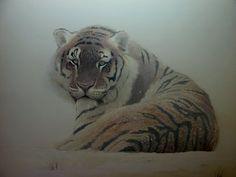 tigre de Sibérie dans la neige... huile toile www.georges-rossi.com
