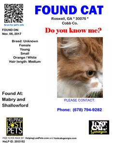 Found Cat - Roswell GA - Nov.06 2017 Closest Intersection: Mabry and Shallowford County: Cobb  Do you know this Cat? #Roswell (Mabry & Shallowford)  #GA 30075 #Cobb Co.  #Cat 11-06-2017! Female #Unknown Orange / White/  CONTACT Phone: (678) 794-9282  More Info Photos and to Contact: http://ift.tt/2m1v72z  To see this pets location on the HelpingLostPets Map: http://ift.tt/2yFe646  Let's get this cat home! #lostcatsgeorgia  #HelpingLostPets